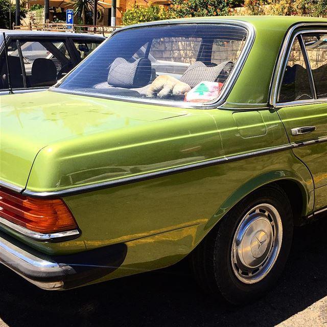 Pistachio mobile pistachio car mercedesbenz chouf darelqamar ... (Chouf)