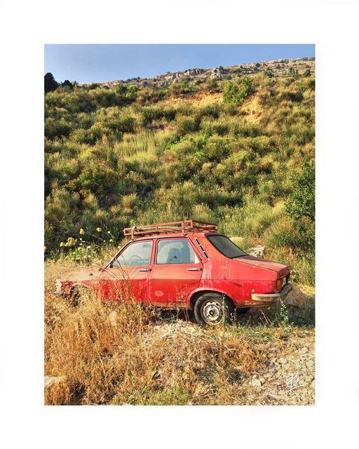 🌳🚗 (Lebanon)