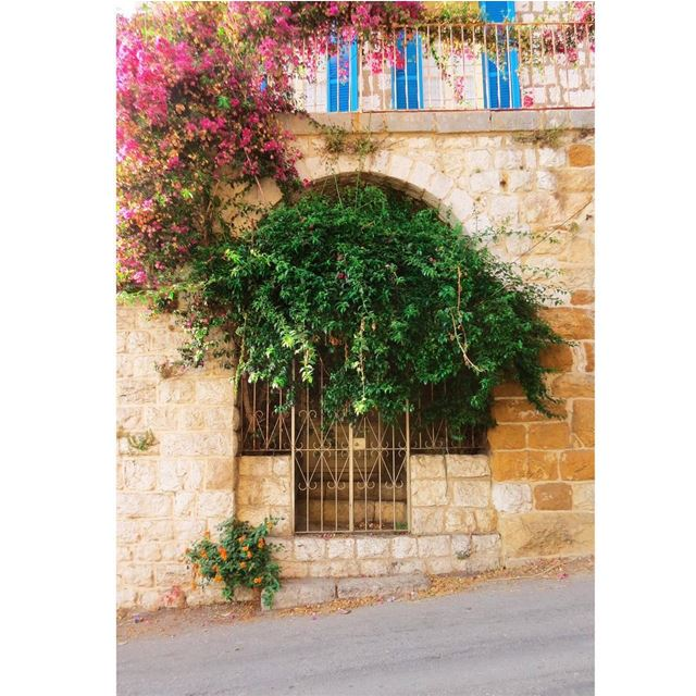 Nonpareil 🌺 HiddenTreasures WorldToXplore HuntgramLebanon ... (Ghosta, Mont-Liban, Lebanon)