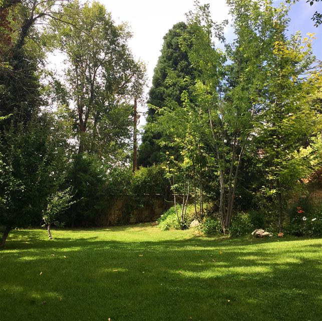September garden garden_styles nofilter trees bluesky ig_lebanon ...