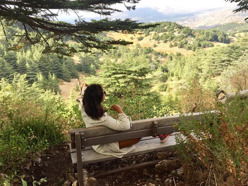 ...because when you stop and look around,this life is pretty amazing 🙂... (Al Shouf Cedar Nature Reserve)