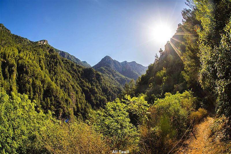 ☀️ landscape beautiful nikon d810 nature nature_uc insta_lebanon ... (Chouwen)