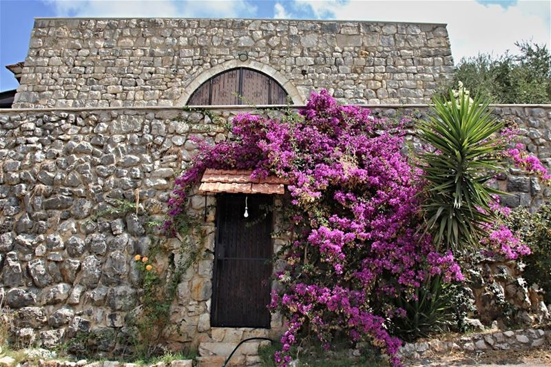 Traditional stone country house in the mountains of Lebanon [Notice how... (Lebanon)