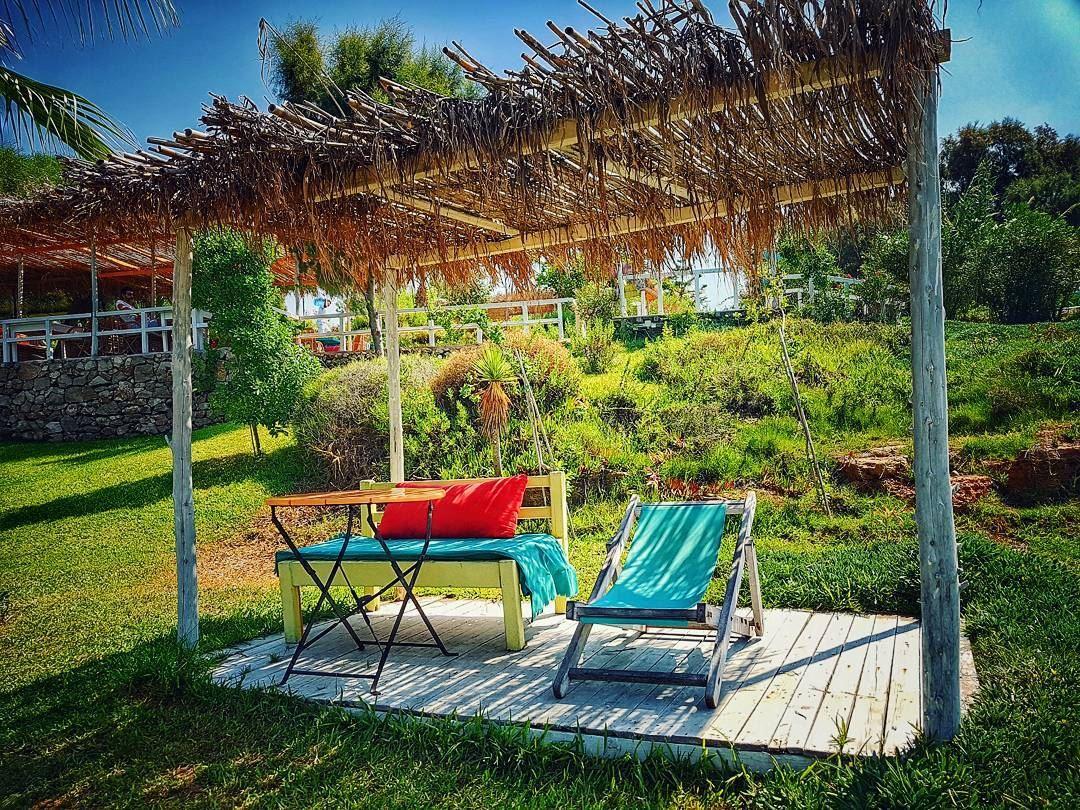 Our nest for the day💛 lazyb ......... beachlife beach ... (Lazy B)