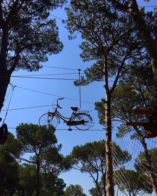 """C'est ce qu'on appelle """"vél...haut """" 🚴🏾🚴♀️😍😍 nature ..."""
