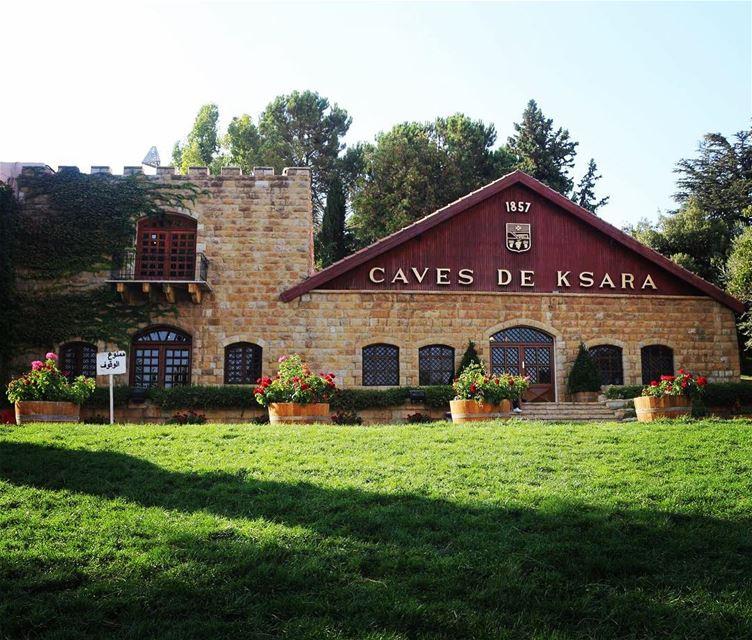 Weekend destination 🏡🍷 (Château Ksara)