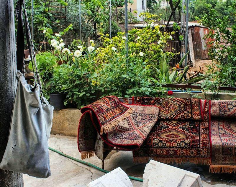 ضيعة... lebanon beino akkar beinovillage house authentic ... (Beïno, Liban-Nord, Lebanon)