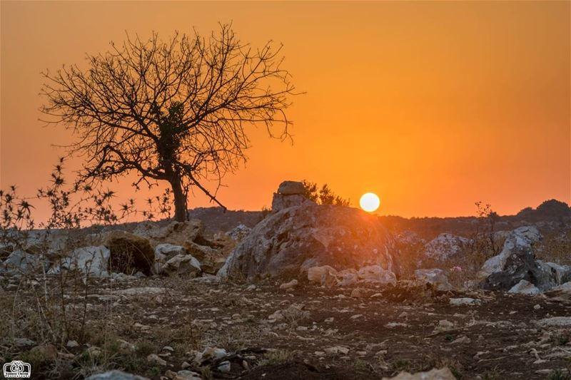 قبلة وداع على جبين صخرة ... sun sunset sunsetlebanon sunsetnabatieh ...