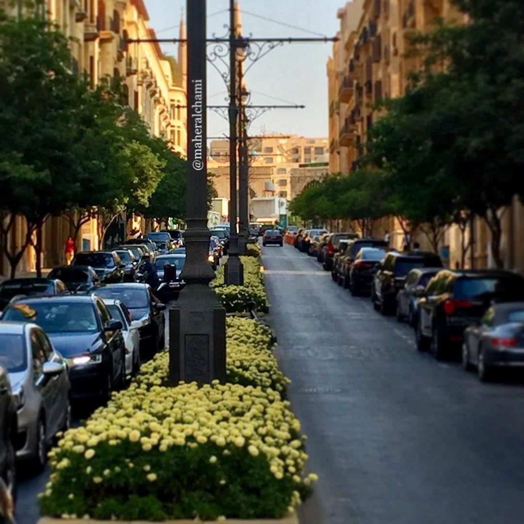 💛.🇱🇧. beiruting downtown love lebanon beirut homeland ... (Downtown Beirut)