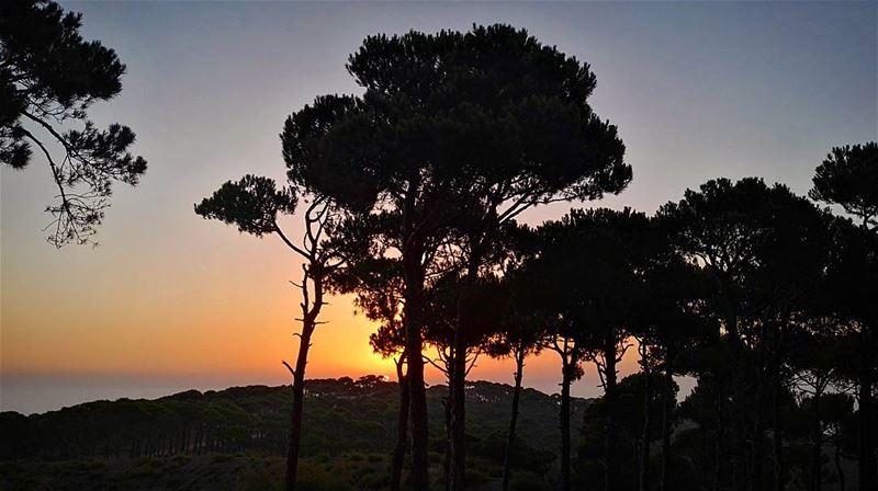 amazing view sun sunset lebanon mountains mountlebanon love ... (Falougha, Mont-Liban, Lebanon)
