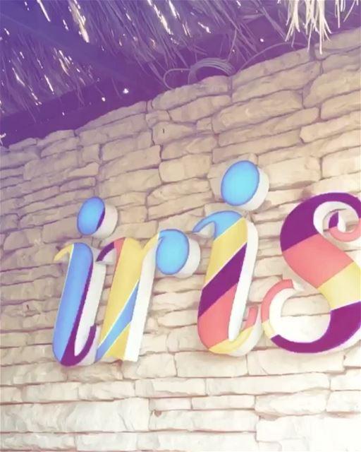 Chase the S U N ☀️🌈🐬🌴🦄 beirut lebanon lovebeirut beirutcity ... (Iris Beach Club)
