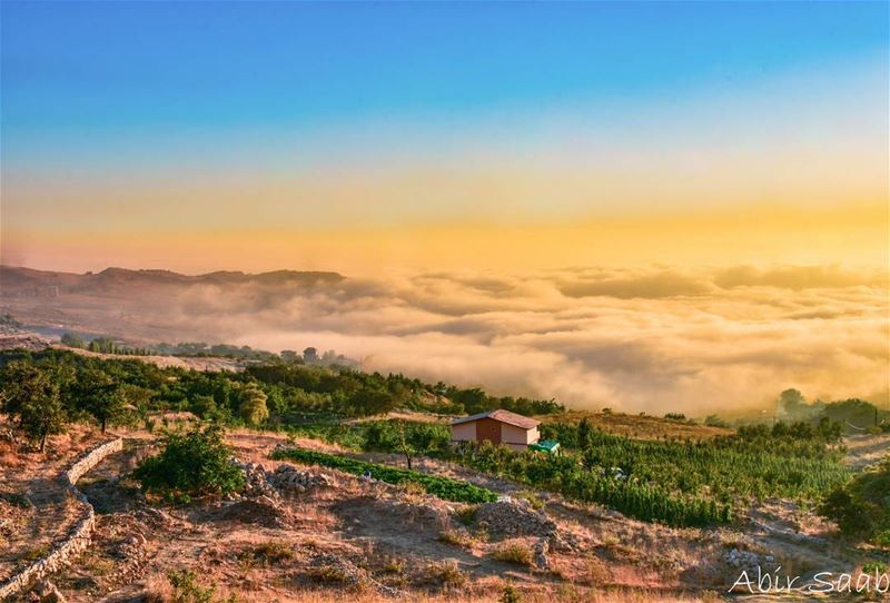 🇱🇧 Lebanon 🇱🇧 lebanon bekish baskinta foggy sunset sunsets ... (Baskinta, Lebanon)