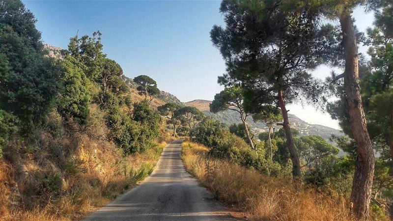 Discovering New Roads 🍃🌾 roads roadtrip lebanon hdr photographers ... (Jezzîne, Al Janub, Lebanon)