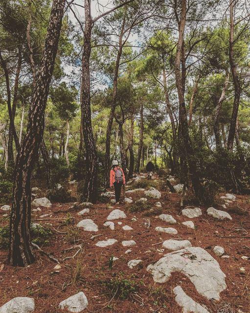 Jezzine Region, Lebanon lebanon hiking nature outdoors ... (District de Jezzine)