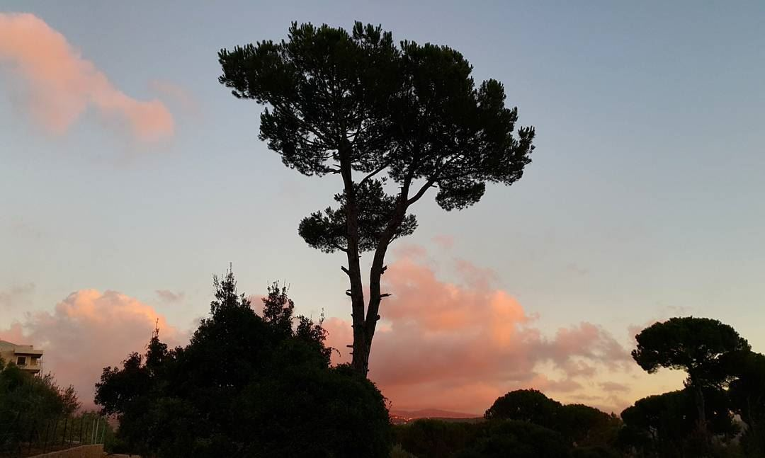 Alone! While the world disappears. . sunset ptk_sky silouette ... (Ed Douâr, Mont-Liban, Lebanon)