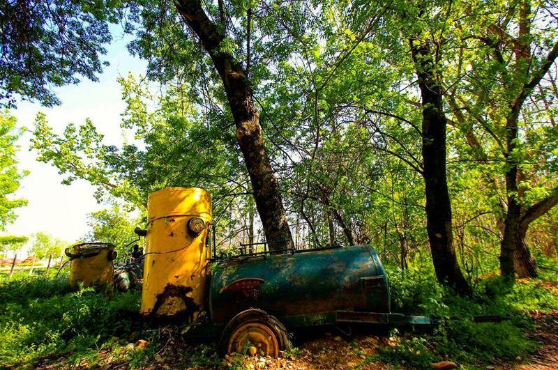 Get lost in nature 🚜..... livelovelebanon saraheidphotography ... (Deïr Taanâyel, Béqaa, Lebanon)