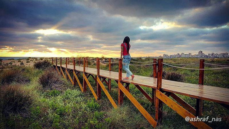 أمس انتهينا فلا كنا ولا كانيا صاحب الوعد خلي الوعد نسيانا...طاف النعاس عل (Tyre Coast Nature Reserve - محمية شاطئ صور الطبيعية)