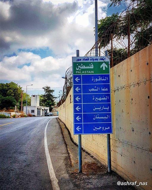 أنا لا أنساكِ فلسطين ويشدّ يشدّ بي البعد...أنا في أفيائكِ نسرين أنا زهر... (Naqoura)
