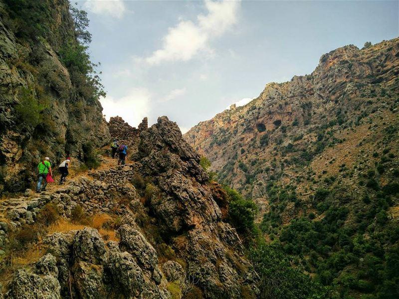 Hiking 🏔- Wede annoubin north lebanon livelovelebanon livelovebesharre... (Ouâdi Qannoûbîne, Liban-Nord, Lebanon)