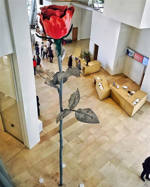 A single rose can be my garden... a single friend, my world.Tag your best... (Fondation Louis Vuitton)