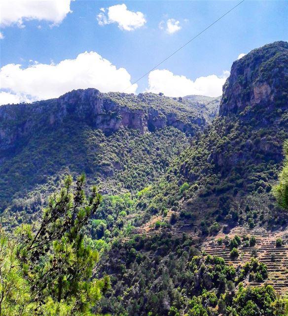50 Shades of green ⛰🍃 ..... adventure explore liveoutdoors... (Wadi Qannubin, Liban-Nord, Lebanon)