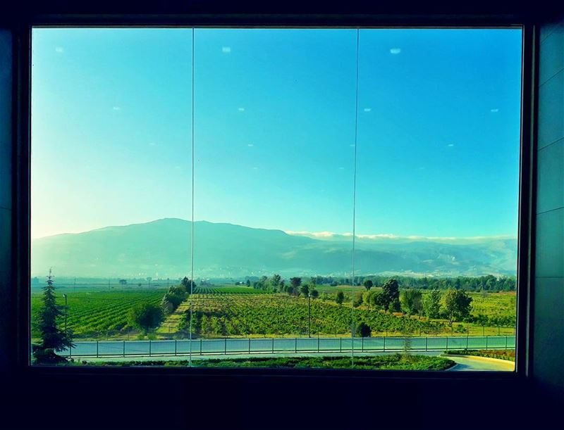 Set wide the window. Let me drink the... (Beqaa Governorate)