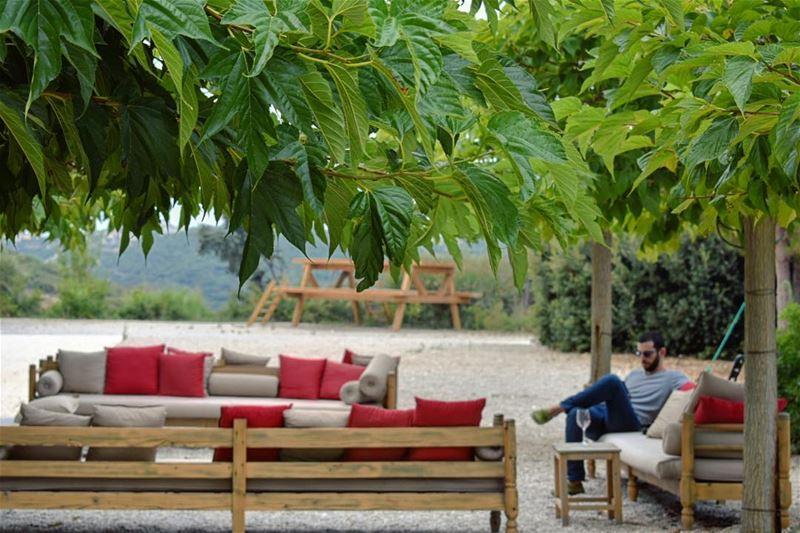 TGIF 🌿🌱🍇🍷•••••••••••••••••• wine winery winetasting tgif Lebanon... (Ixir Winery)