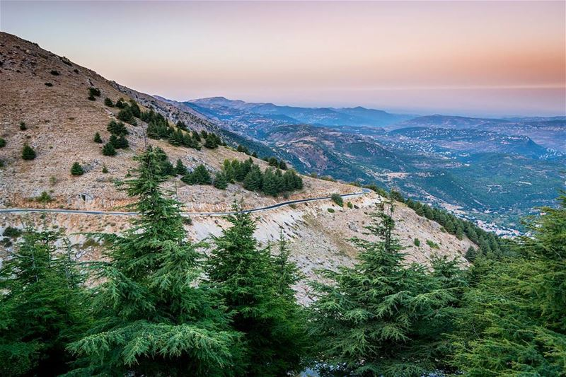 Moments before the sunrise high on the mountains💛💚. Best chill time ever... (Bâroûk, Mont-Liban, Lebanon)