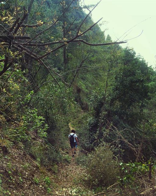 ~Remember why you started~ @peak2peaklb hike hiking friends family ... (Chouène, Mont-Liban, Lebanon)