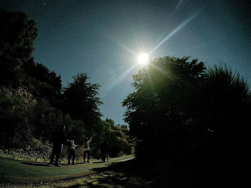 Shine Bright Like A Diamond 🌚🌲 FullMoonHike Hiking Cedars AinZhalta ... (Aïn Zhalta, Mont-Liban, Lebanon)