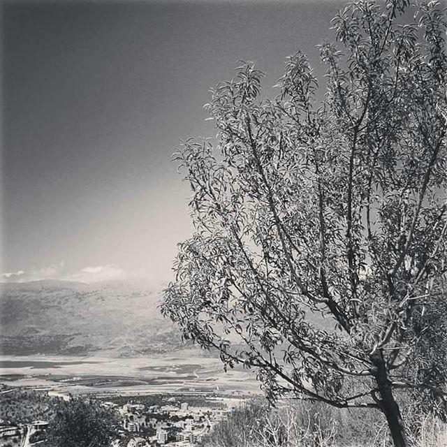 En el corazón de todos los inviernos vive una primavera palpitante, y detrá (Lebanon)
