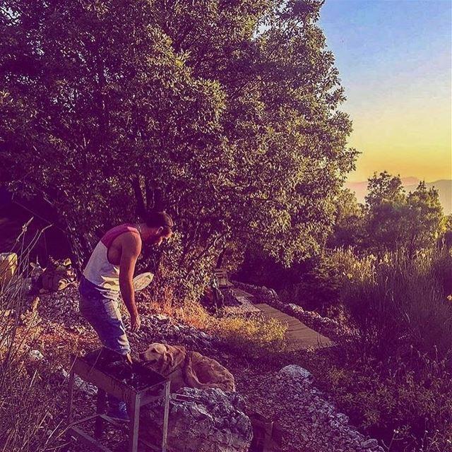 A cute unexpected visitor 💚 camping sunset livelovebmohray ... (Bmahray, Mont-Liban, Lebanon)