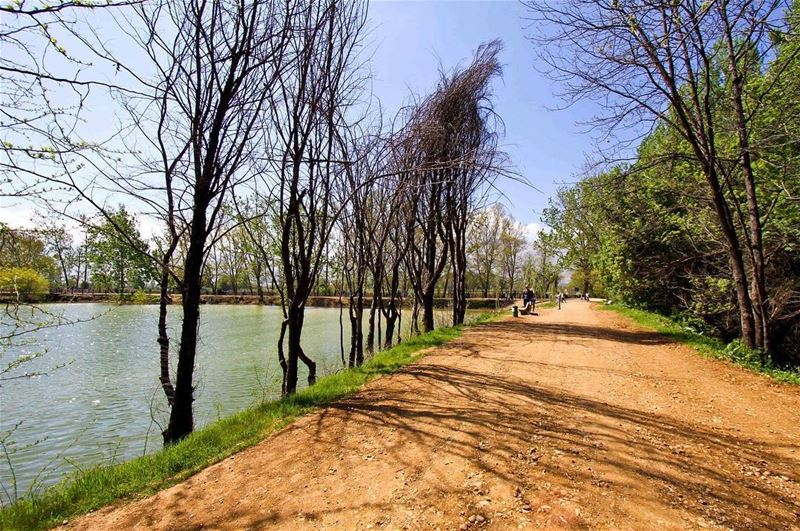 Strolling around the lake 🍃..... livelovelebanon livelovetaanayel ... (Deïr Taanâyel, Béqaa, Lebanon)