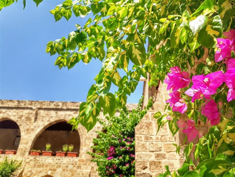 خان_الافرنج sidon lebanon kalawounphoto lebanon_vacations ... (خان الافرنج)