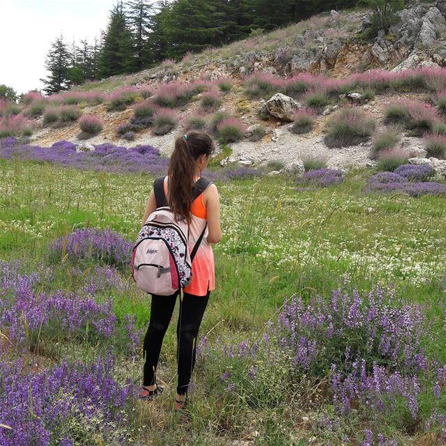 living in a dream💭 hiking hikingculture lebanon ... (Bâroûk, Mont-Liban, Lebanon)