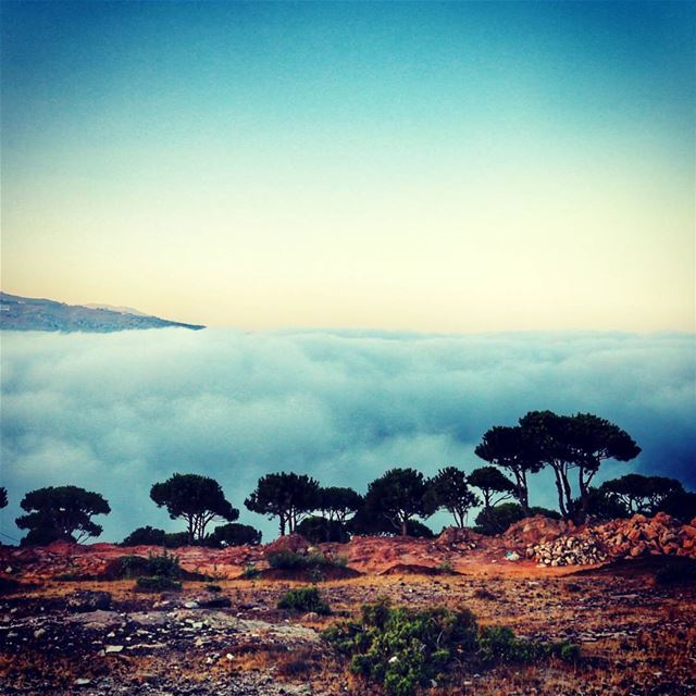 Waking up to this!! nature fromwhereistand photography livelovelebanon...
