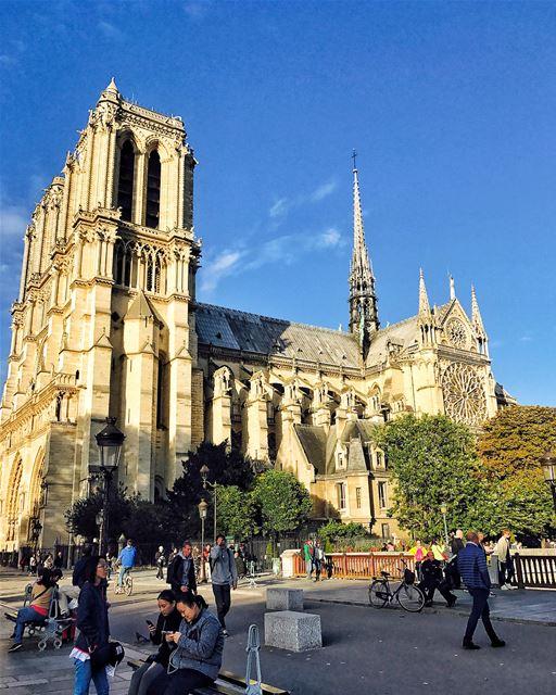 Notre Dame de Paris..... Lebanon Beirut popcorn961 summer ... (Cathédrale Notre-Dame de Paris)