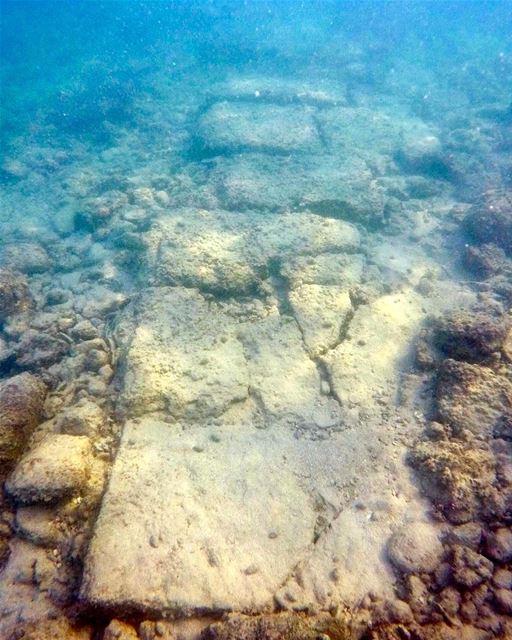 tyre lebanon🇱🇧 underwater underwaterphotography underwaterphoto ... (Tyre, Lebanon)