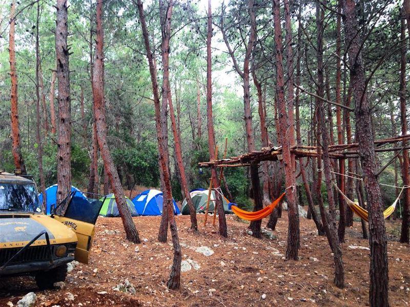 ⛺️🏕⛺️🏕👌🏻🇱🇧 camping campinglife ...