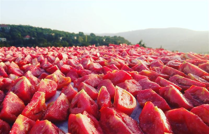 مونة! lebanon chouf botmeh livelovebotmeh healthyfood nature green ... (Botmeh El Shouf)