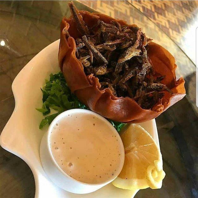 batroun restaurants batrouniyat bezre fish seafood foodlover ... (Batrouniyat)