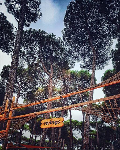 swingswing 🌳.......... lebanonblog beirutlebanon ... (Swings)