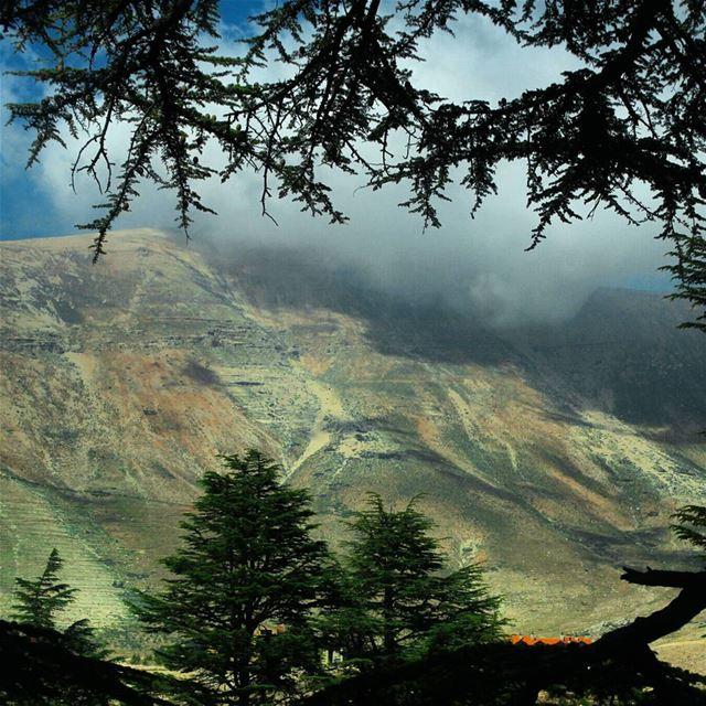 Lebanon's rainbow mountain ? 🗻🌈.... nature lebanon bcharre ... (El Arz, Liban-Nord, Lebanon)