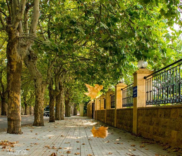 nikon5300 streetshot streetstyle beautifulplaces autumnday... (Sawfar, Mont-Liban, Lebanon)