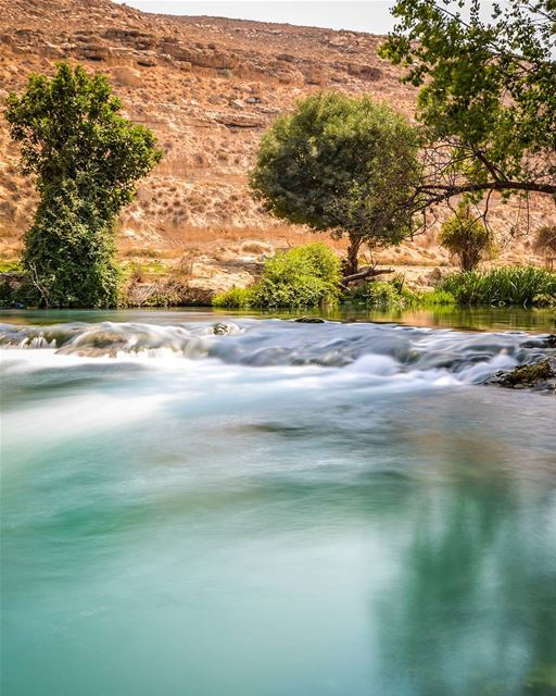 .The beautiful waters of Al-Assi River. A river that's never dries even... (Al Assi River-Hermel, Lebanon)