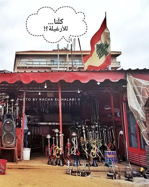 🇱🇧 كل_البلد_عم_بهرغل هرغل_البلد Photo By Racha El Halabi © (El Mina)