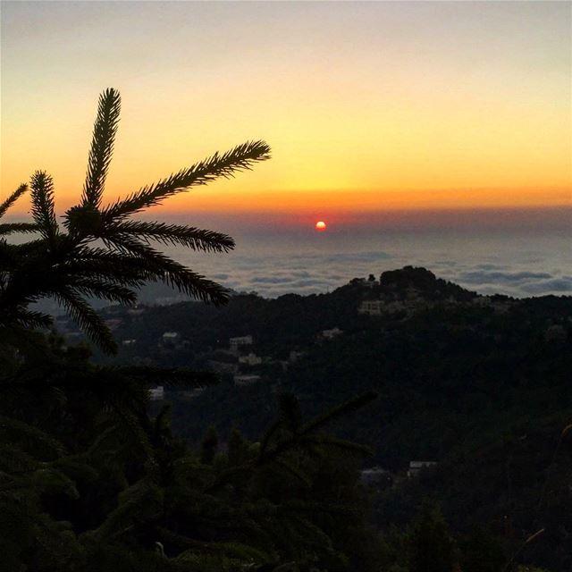 Bonsoir 🌆 Keserwan_______🇱🇧_______ Lebanon come see visit ... (Chahtoûl, Mont-Liban, Lebanon)