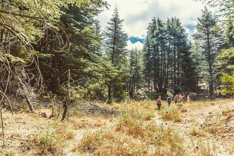 Hadath ElJebbe, Lebanon lebanon hiking nature outdoors ... (Hadath El-Jubbah, Liban-Nord, Lebanon)