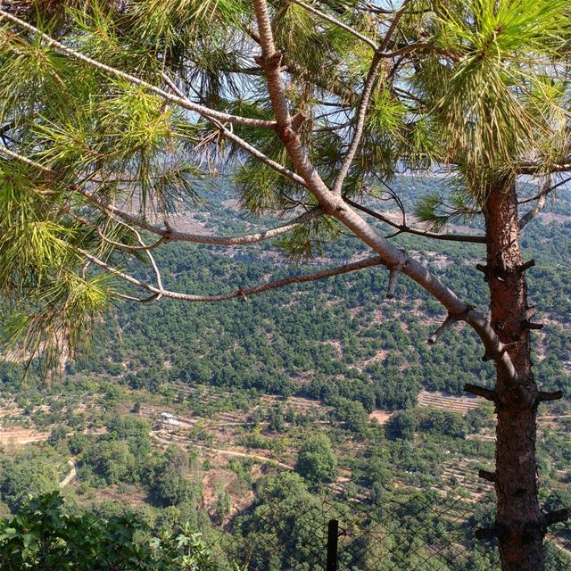 Everywhere there are those lush green mountains. chouf livelovechouf ... (Batloun, Mont-Liban, Lebanon)