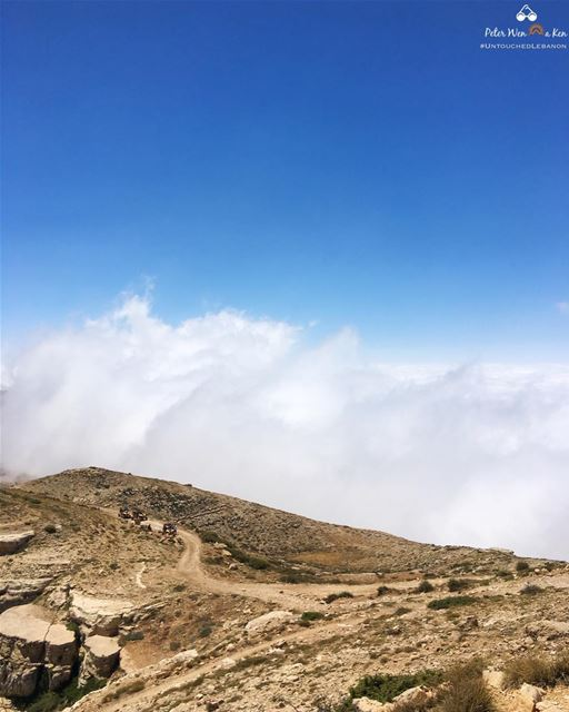 I think 💭 i will be able to, in the end, rise above the clouds and climb... (Lebanon)